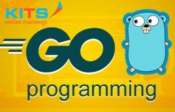 GO Language Online Training