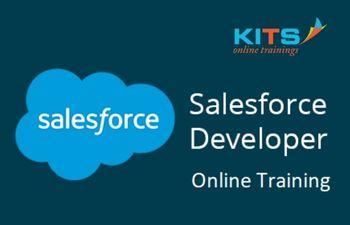 Salesforce Development Online Training