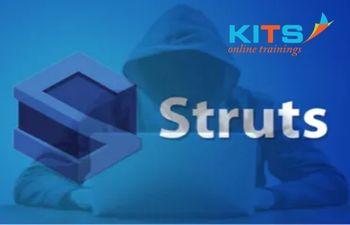 Struts Online Training