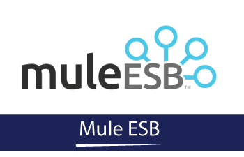 Mule ESB Online Training | KITS Online Trainings